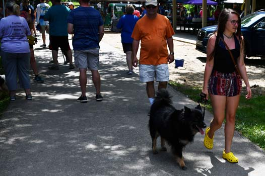 photo of the crowd enjoying PetFest